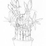 Bambusz vonalrajz